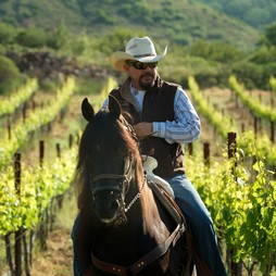 riding on horseback in the vineyard
